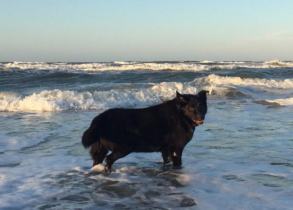 winston_beach